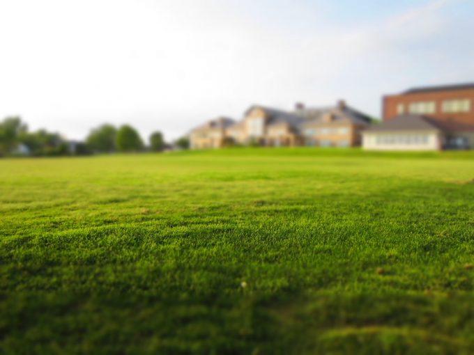 La pelouse d'une résidence