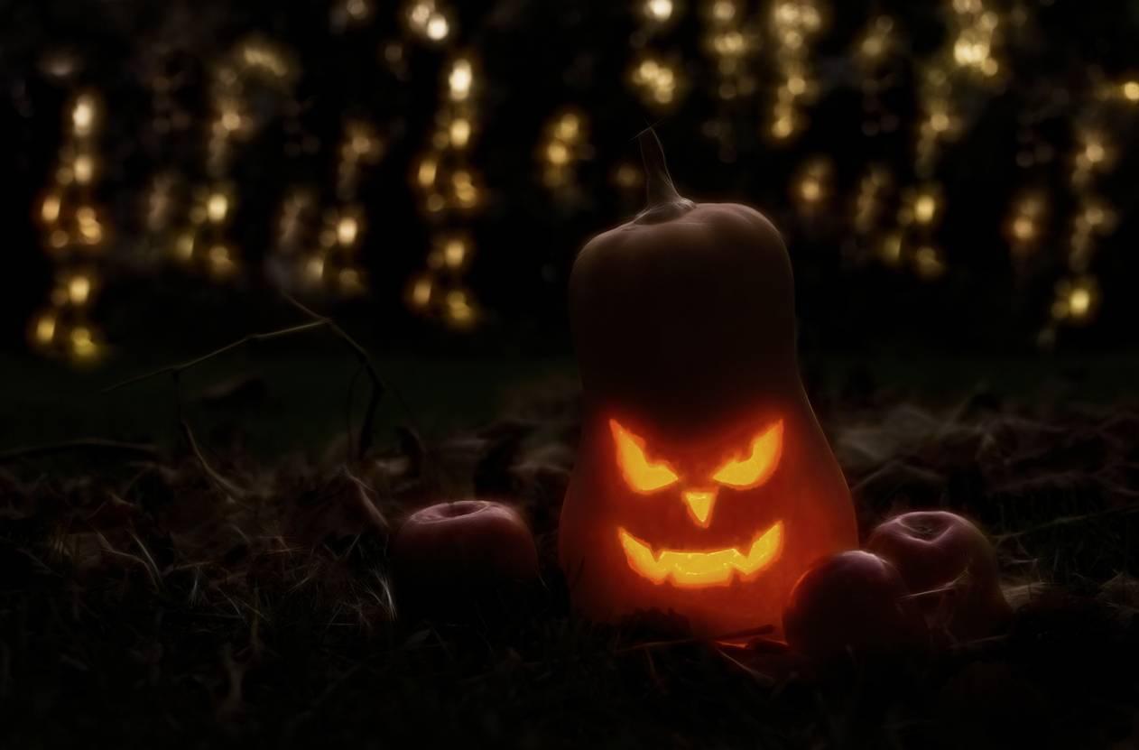 halloween jardin décoration lumières